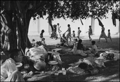 Under the banyan tree Werner Bischof 1951