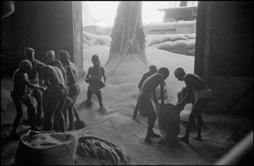 Unloading wheat in Calcutta harbor