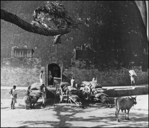 Unloading grain in Patna at the Golghar 1951
