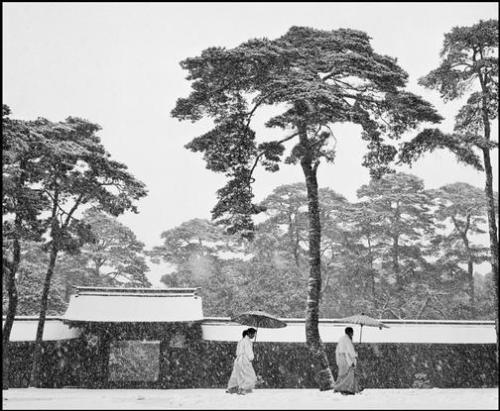 Courtyard of the Meiji Temple, Tokyo 1951