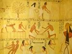 Egypt flax linen production