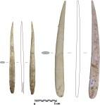 Aurignacian split bone needle